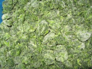 Organic IQF spinach can be blast / flash frozen or used for purees or canned