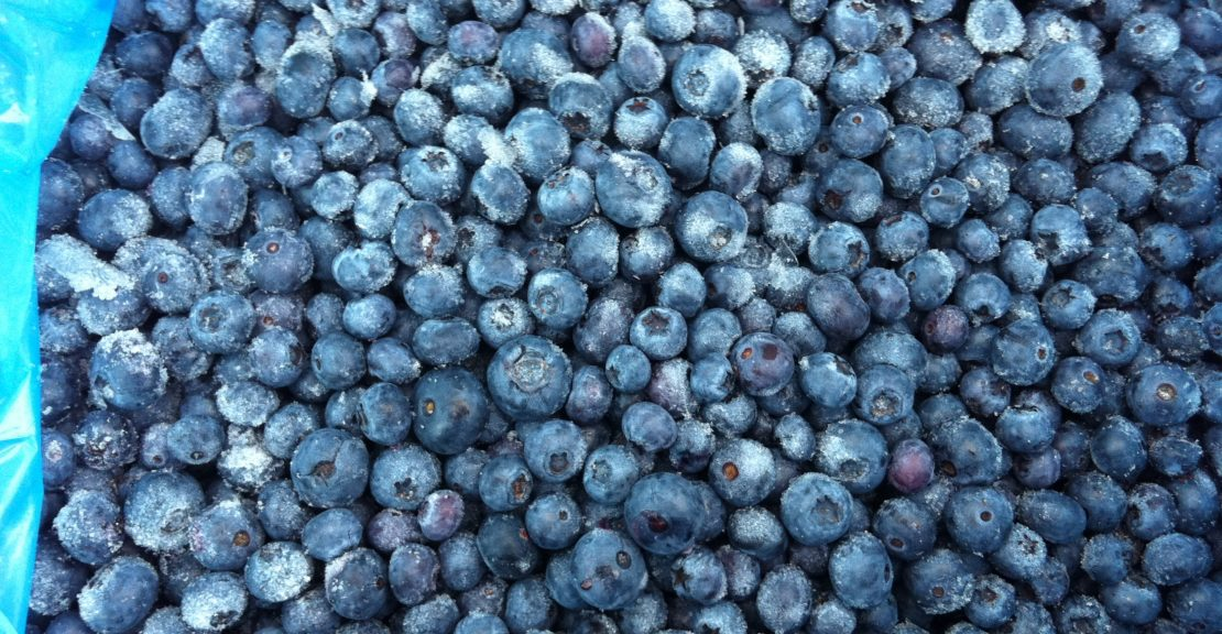Organic IQF Blueberries & Wild IQF Blueberries