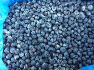 Bulk frozen iqf blueberries - frozen blueberry distributor