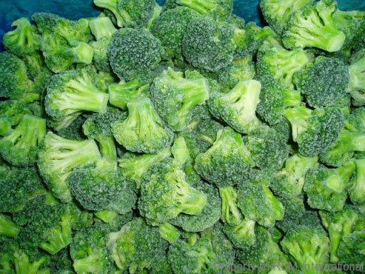 IQF Broccoli Bulk Wholesale Organic Frozen