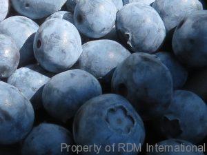 IQF Frozen Fruit - IQF Frozen Vegetables #1 Quality iqf frozen fruit